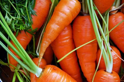 carrots-530x352